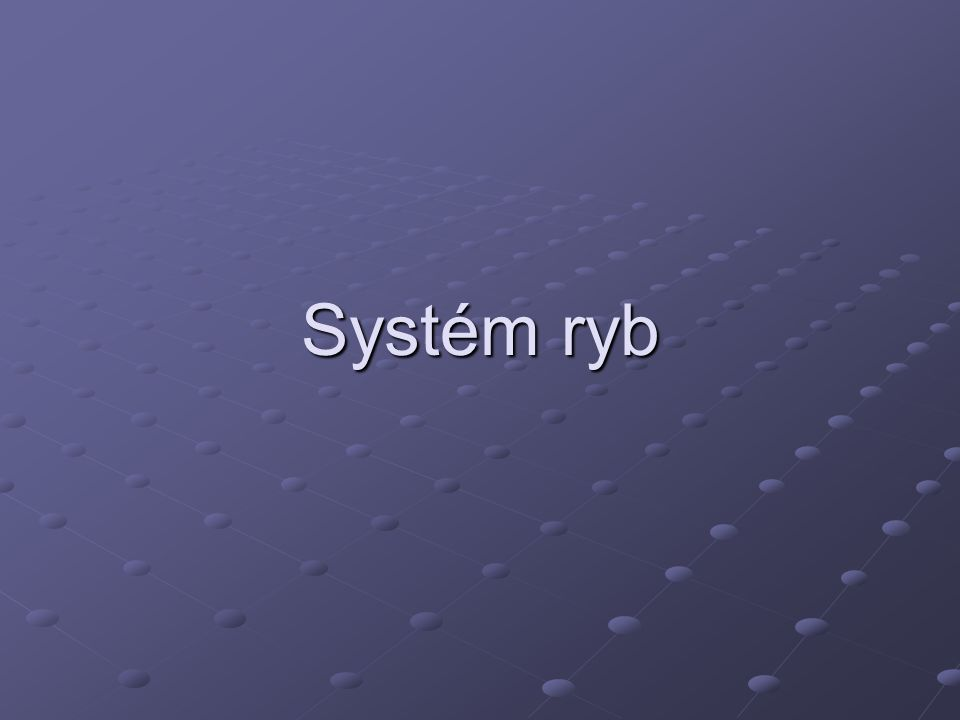Systém ryb