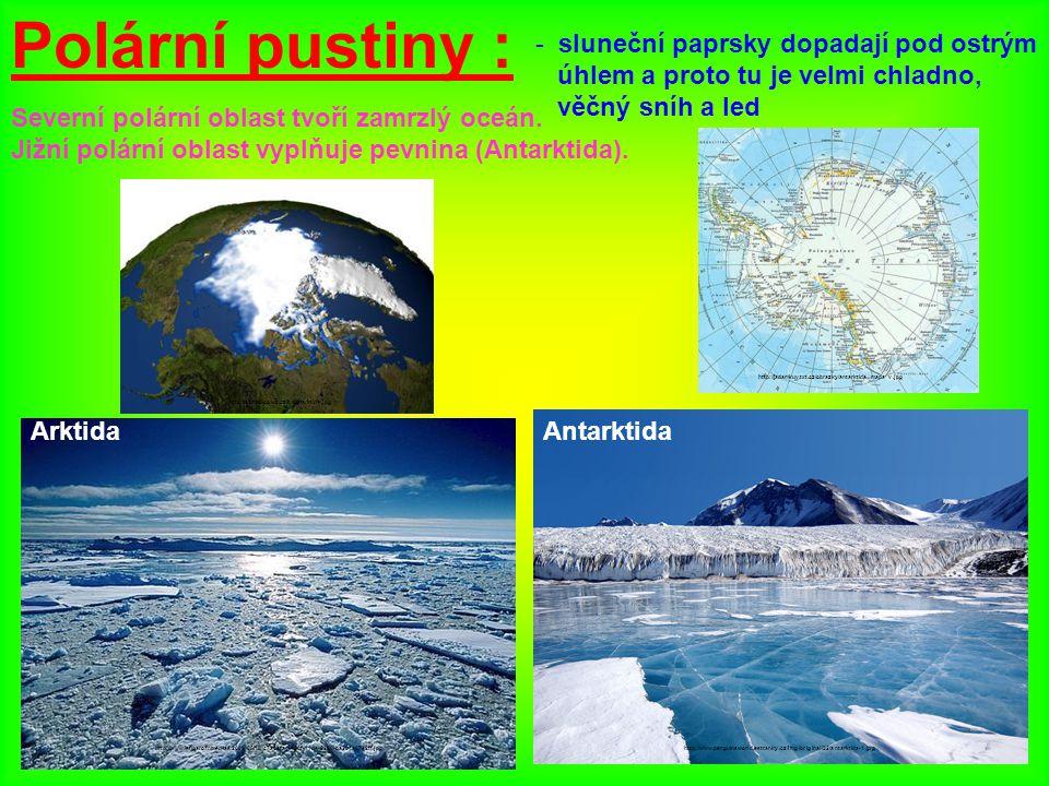 Polární pustiny : - sluneční paprsky dopadají pod ostrým úhlem a proto tu je velmi chladno, věčný sníh a led Severní polární oblast tvoří zamrzlý oceá