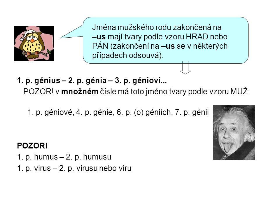 1. p. génius – 2. p. génia – 3. p. géniovi... POZOR! v množném čísle má toto jméno tvary podle vzoru MUŽ: 1. p. géniové, 4. p. génie, 6. p. (o) géniíc
