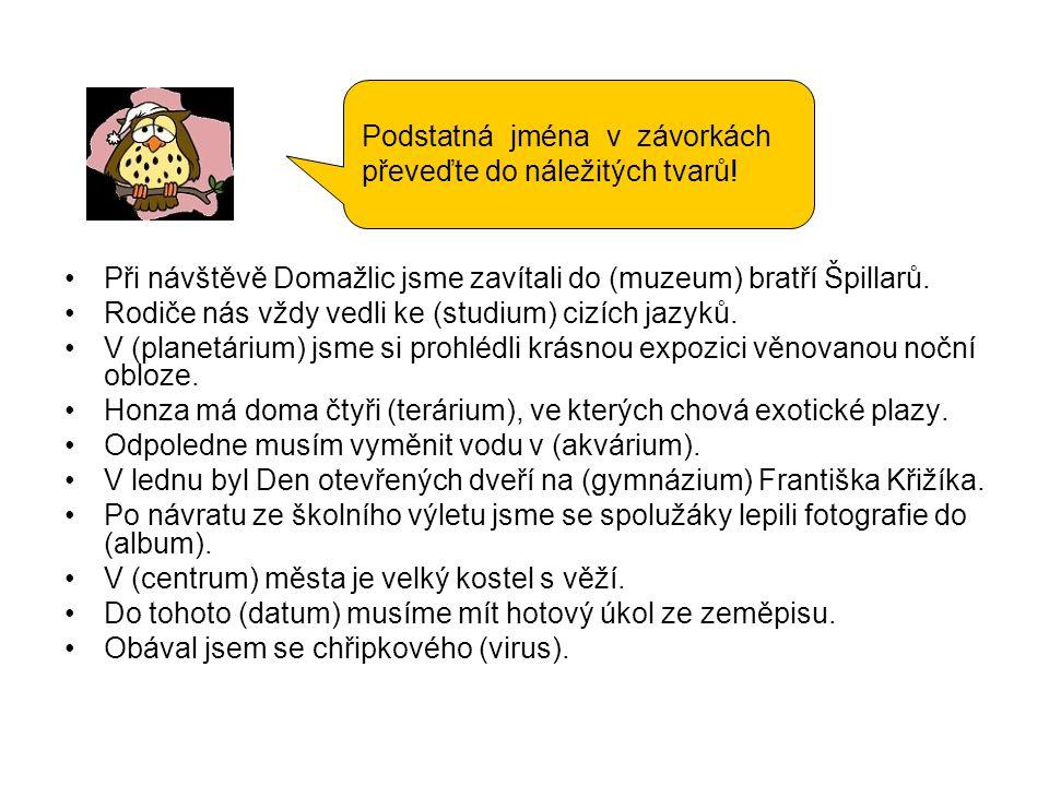 Při návštěvě Domažlic jsme zavítali do (muzeum) bratří Špillarů. Rodiče nás vždy vedli ke (studium) cizích jazyků. V (planetárium) jsme si prohlédli k