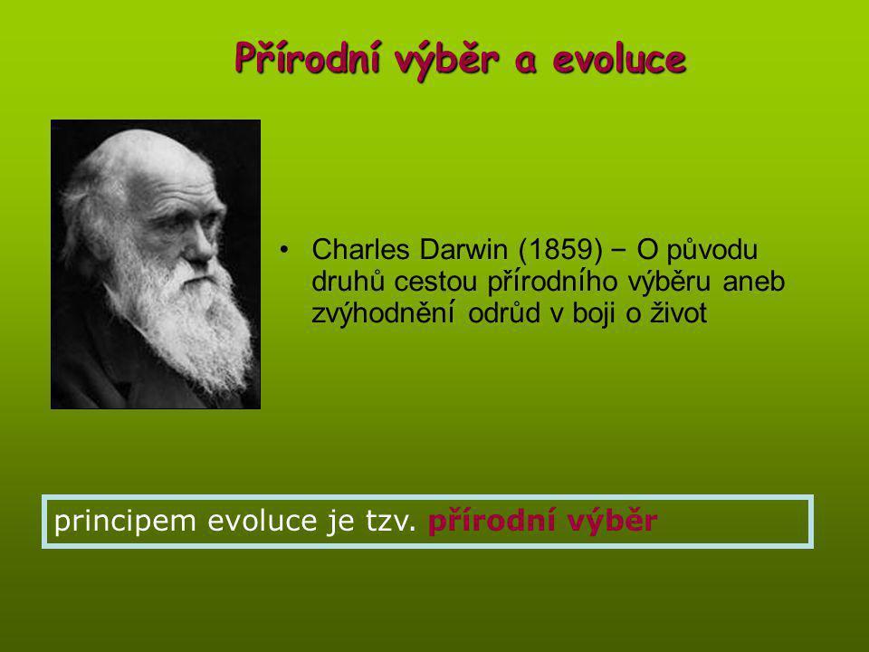 Přírodní výběr a evoluce Charles Darwin (1859) – O původu druhů cestou př í rodn í ho výběru aneb zvýhodněn í odrůd v boji o život principem evoluce je tzv.