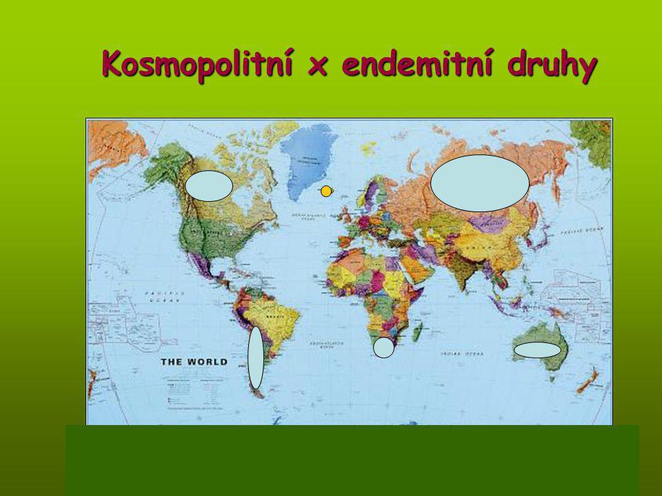 Kosmopolitní x endemitní druhy