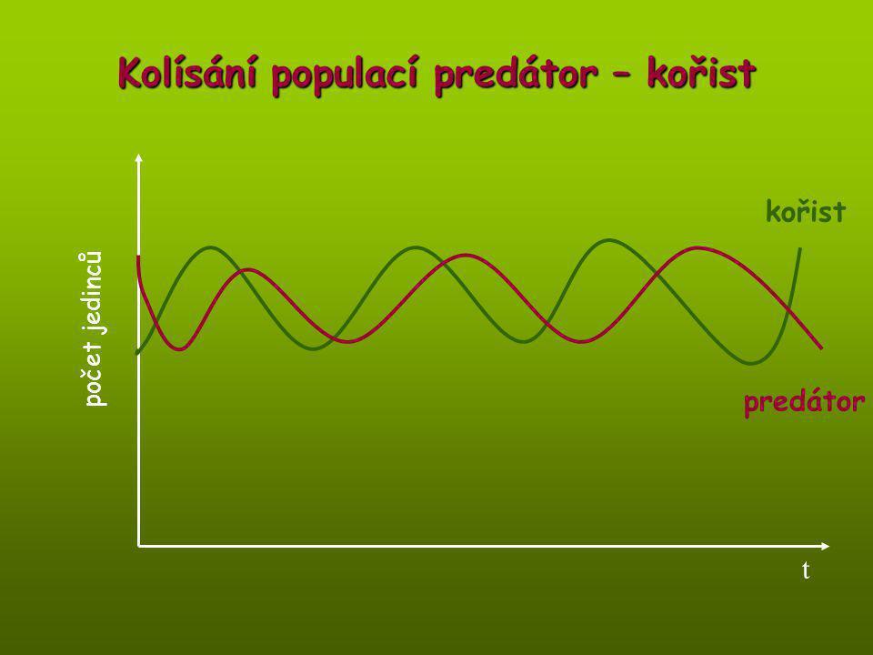 Kolísání populací predátor – kořist počet jedinců t predátor kořist