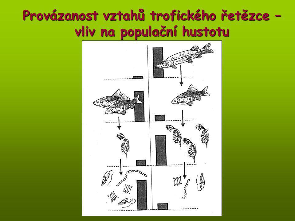 Provázanost vztahů trofického řetězce – vliv na populační hustotu
