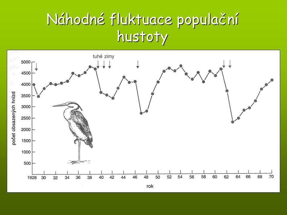 Náhodné fluktuace populační hustoty