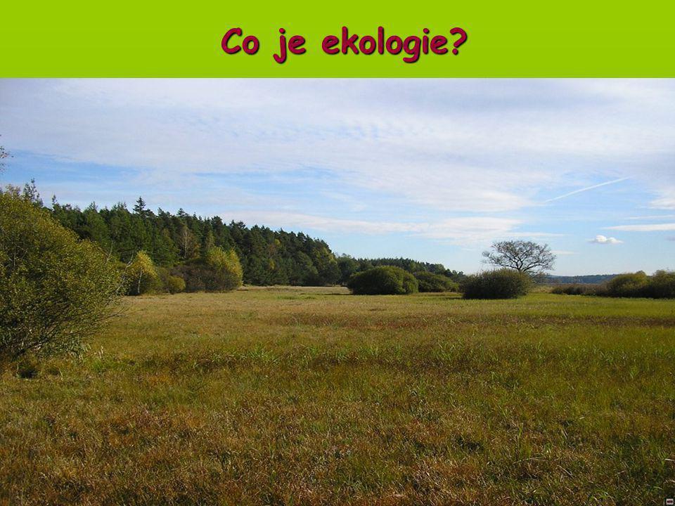 Úvod do obecné ekologie Co je ekologie?
