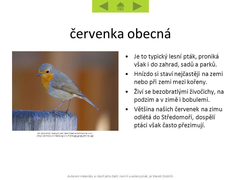 Autorem materiálu a všech jeho částí, není-li uvedeno jinak, je Marek Odstrčil. [cit. 2012-10-10]. Dostupný pod licencí Creative Commons na www:. Je t