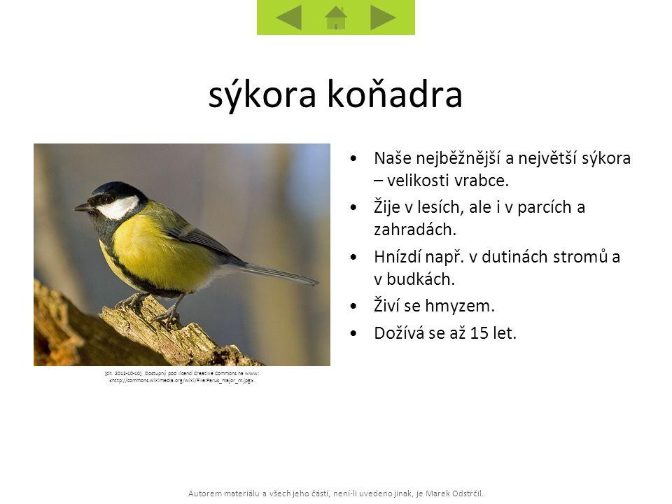 Autorem materiálu a všech jeho částí, není-li uvedeno jinak, je Marek Odstrčil. [cit. 2012-10-10]. Dostupný pod licencí Creative Commons na www:. Naše