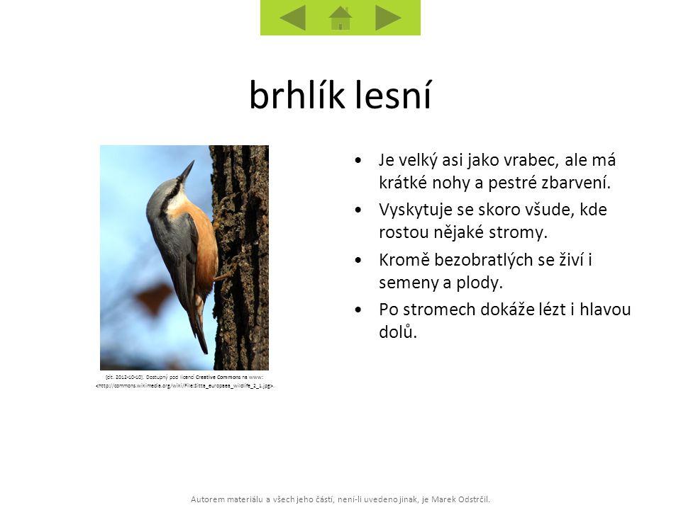 Autorem materiálu a všech jeho částí, není-li uvedeno jinak, je Marek Odstrčil. [cit. 2012-10-10]. Dostupný pod licencí Creative Commons na www:. Je v