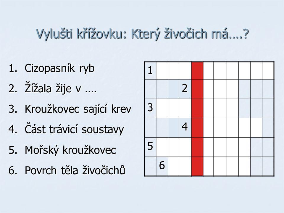 Vylušti křížovku: Který živočich má….? 1. Cizopasník ryb 2. Žížala žije v …. 3. Kroužkovec sající krev 4. Část trávicí soustavy 5. Mořský kroužkovec 6