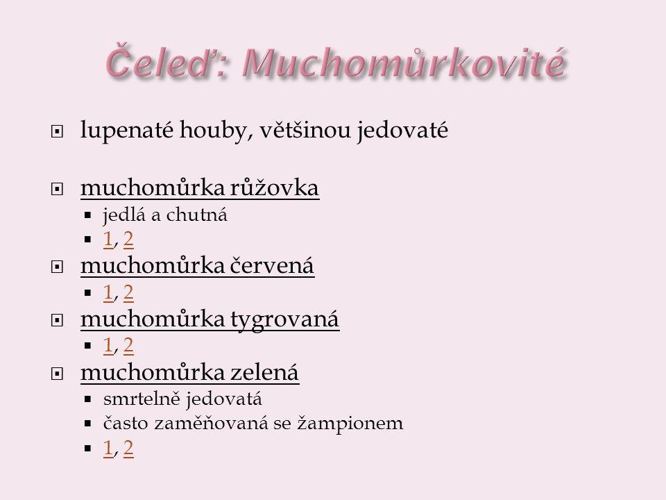  lupenaté houby, většinou jedovaté  muchomůrka růžovka  jedlá a chutná  1, 2 12  muchomůrka červená  1, 2 12  muchomůrka tygrovaná  1, 2 12 