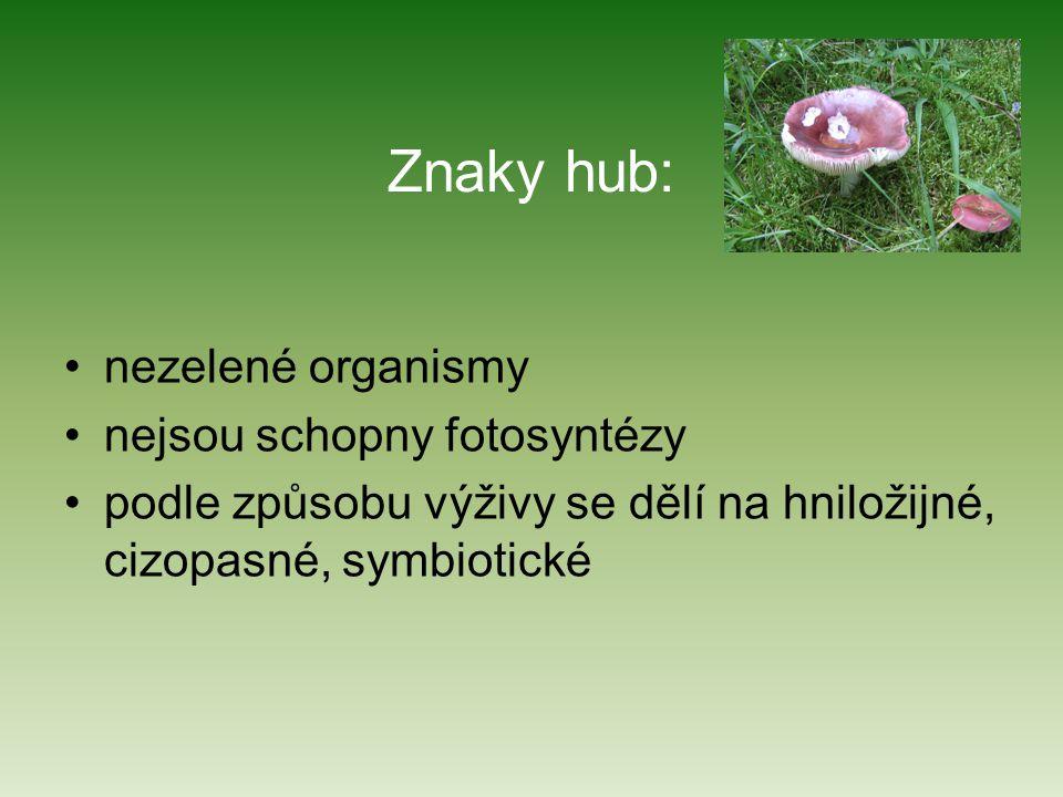 Znaky hub: nezelené organismy nejsou schopny fotosyntézy podle způsobu výživy se dělí na hniložijné, cizopasné, symbiotické