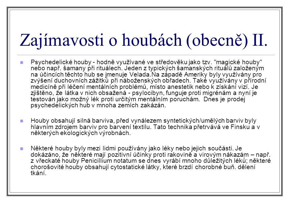 Zajímavosti o houbách (obecně) II. Psychedelické houby - hodně využívané ve středověku jako tzv.