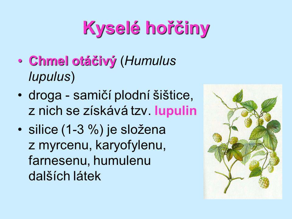 Kyselé hořčiny Chmel otáčivýChmel otáčivý (Humulus lupulus) droga - samičí plodní šištice, z nich se získává tzv. lupulin silice (1-3 %) je složena z