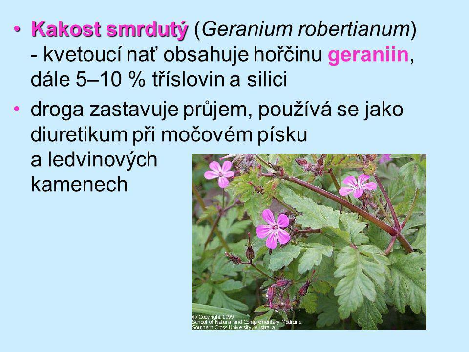 Kakost smrdutýKakost smrdutý (Geranium robertianum) - kvetoucí nať obsahuje hořčinu geraniin, dále 5–10 % tříslovin a silici droga zastavuje průjem, p