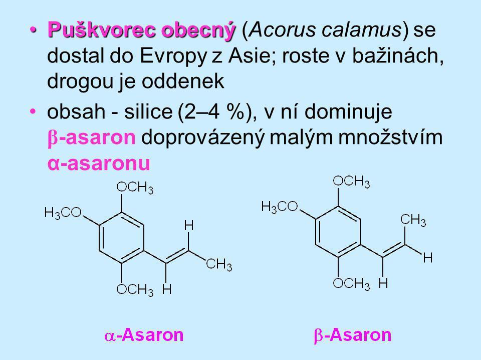 Puškvorec obecnýPuškvorec obecný (Acorus calamus) se dostal do Evropy z Asie; roste v bažinách, drogou je oddenek obsah - silice (2–4 %), v ní dominuj