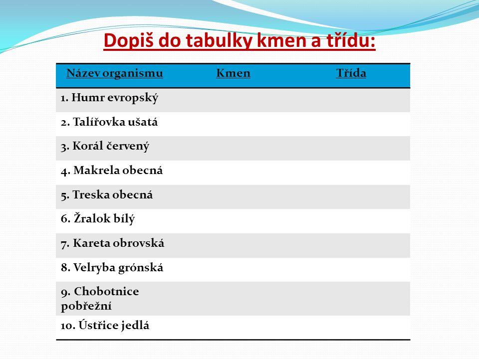 Dopiš do tabulky kmen a třídu: Název organismuKmenTřída 1. Humr evropský 2. Talířovka ušatá 3. Korál červený 4. Makrela obecná 5. Treska obecná 6. Žra