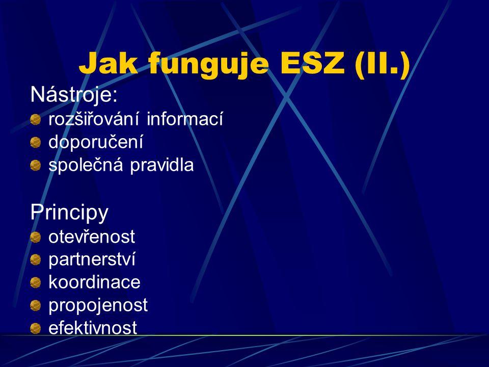 Jak funguje ESZ (II.) Nástroje: rozšiřování informací doporučení společná pravidla Principy otevřenost partnerství koordinace propojenost efektivnost