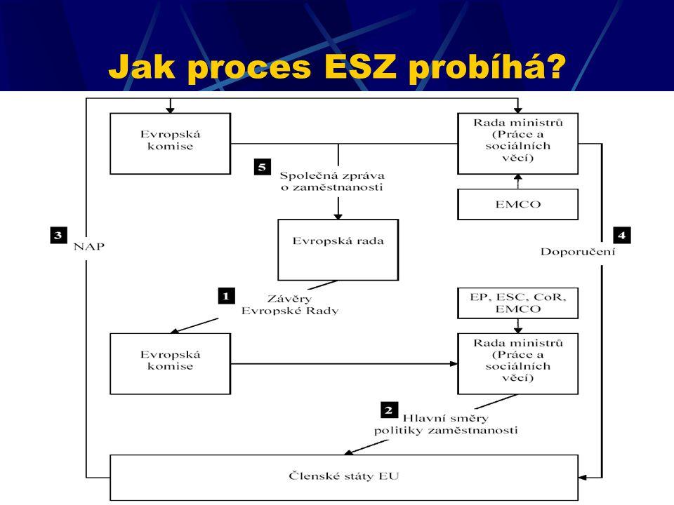 Jak proces ESZ probíhá