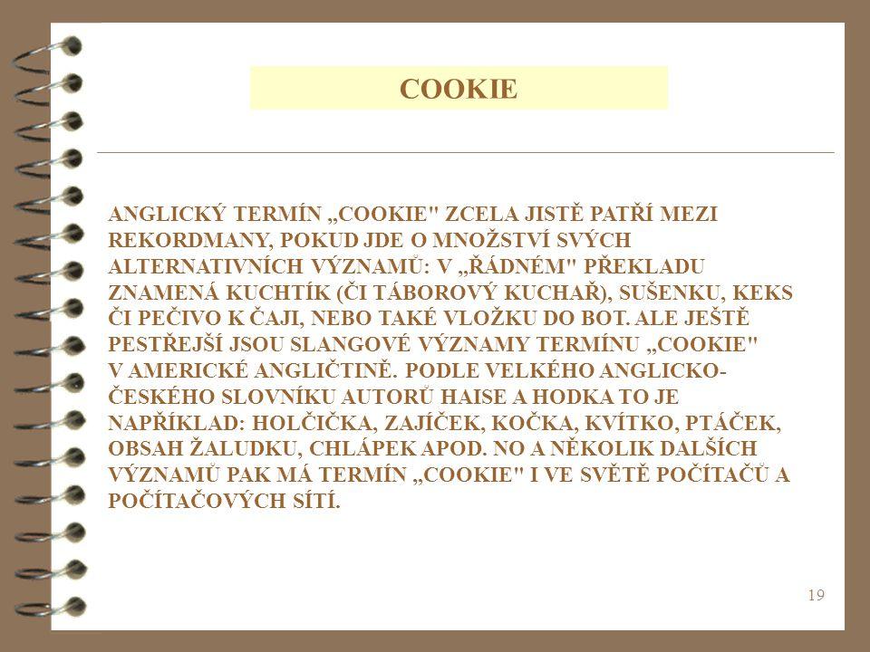 "19 COOKIE ANGLICKÝ TERMÍN ""COOKIE"