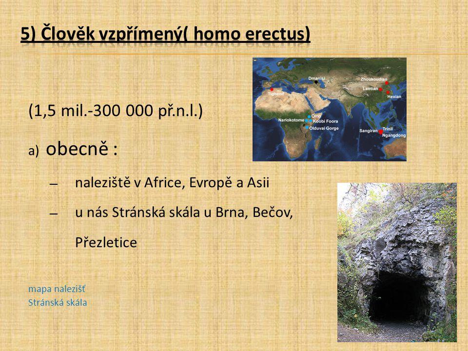 (1,5 mil.-300 000 př.n.l.) a) obecně : ― naleziště v Africe, Evropě a Asii ― u nás Stránská skála u Brna, Bečov, Přezletice mapa nalezišť Stránská ská