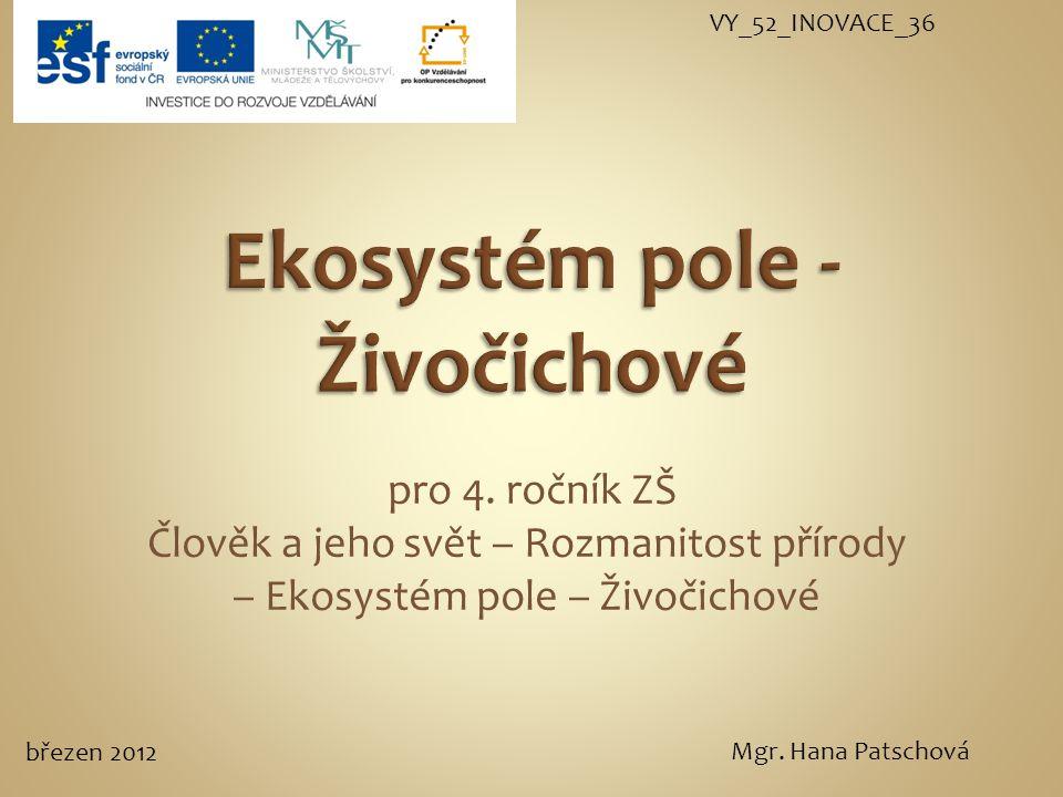 dravec živí se hraboši, hlodavci a hmyzem užitečná stálý a krmivý pták Poštolka obecná (http://prirodainfo.cz/zvuky.php?cislo=110.00)