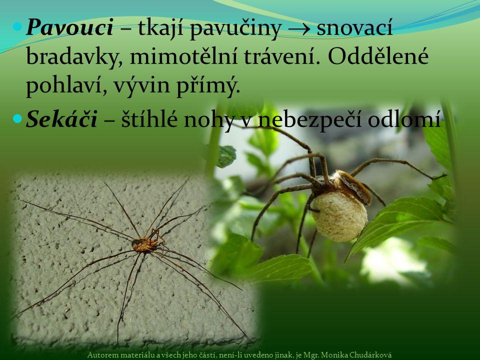Pavouci – tkají pavučiny  snovací bradavky, mimotělní trávení. Oddělené pohlaví, vývin přímý. Sekáči – štíhlé nohy v nebezpečí odlomí Autorem materiá