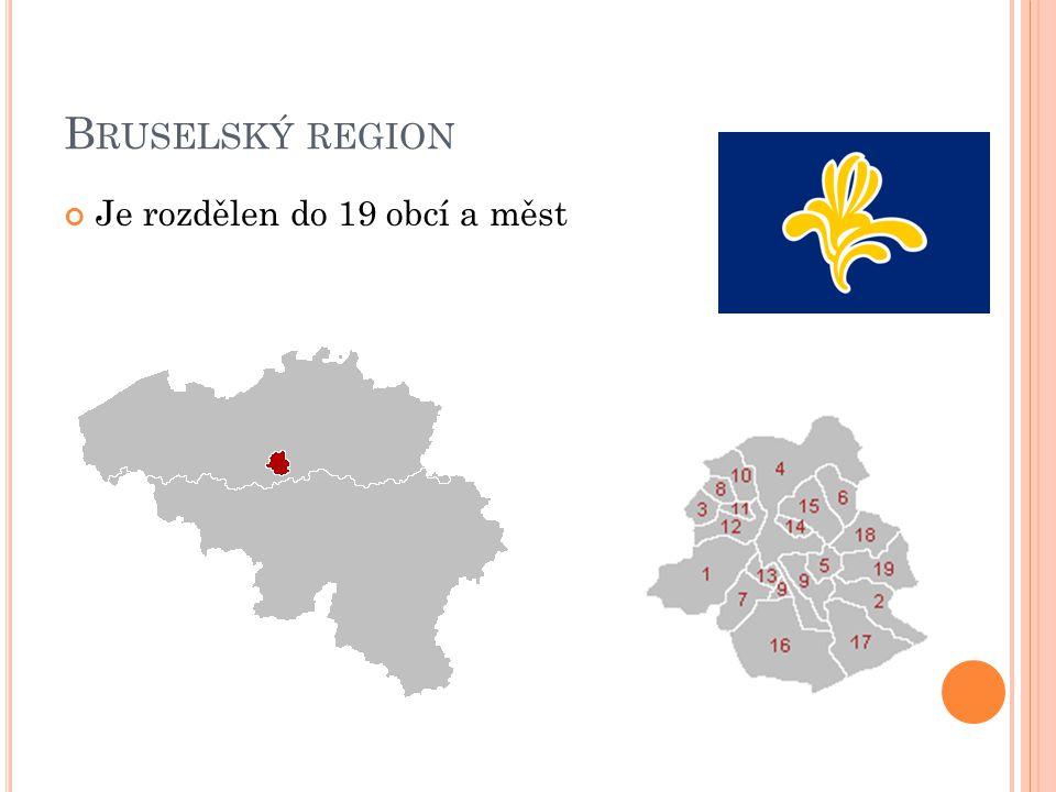 B RUSELSKÝ REGION Je rozdělen do 19 obcí a měst