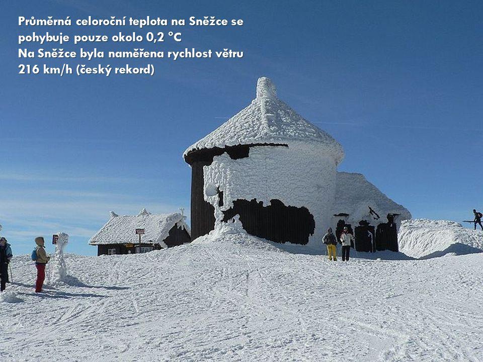 Průměrná celoroční teplota na Sněžce se pohybuje pouze okolo 0,2 °C Na Sněžce byla naměřena rychlost větru 216 km/h (český rekord)