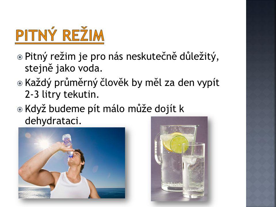  Pitný režim je pro nás neskutečně důležitý, stejně jako voda.  Každý průměrný člověk by měl za den vypít 2-3 litry tekutin.  Když budeme pít málo