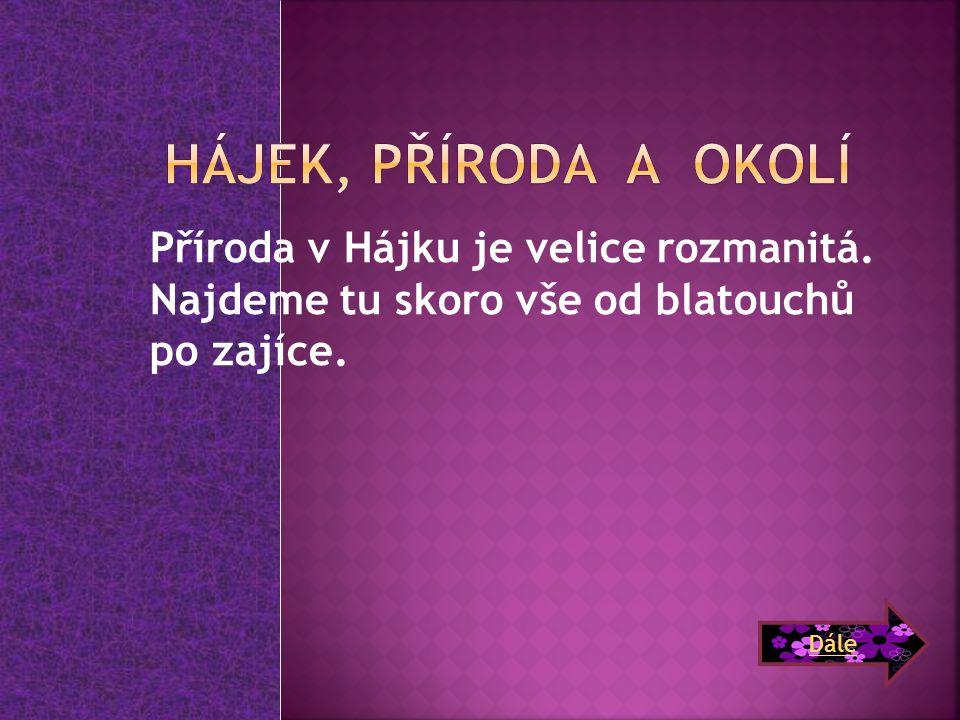 Aneta Svobodová *26.10.1998 Zájmy: aerobic,rodina, přátelství, kolo Podíl na projektu: Vyhledávání informací a obrázků.