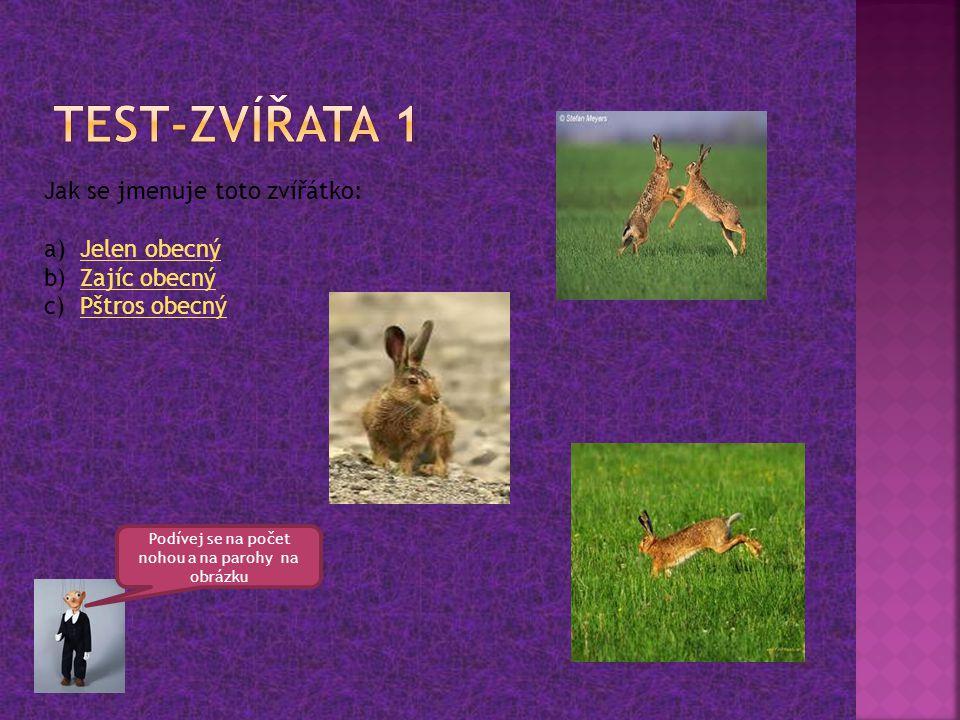 Jak se jmenuje toto zvířátko: a)Jelen obecnýJelen obecný b)Zajíc obecnýZajíc obecný c)Pštros obecnýPštros obecný Podívej se na počet nohou a na parohy