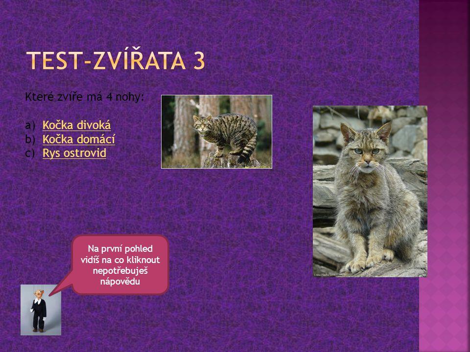 Které zvíře má 4 nohy: a)Kočka divokáKočka divoká b)Kočka domácíKočka domácí c)Rys ostrovidRys ostrovid Na první pohled vidíš na co kliknout nepotřebu