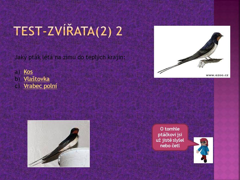 O tomhle ptáčkovi jsi už jistě slyšel nebo četl Jaký pták létá na zimu do teplých krajin: a)KosKos b)VlaštovkaVlaštovka c)Vrabec polníVrabec polní