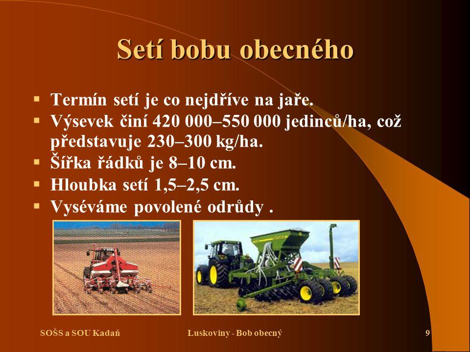 SOŠS a SOU KadaňLuskoviny - Bob obecný10 Ošetřování porostu bobu obecného   Ošetřování spočívá v aplikaci herbicidů.
