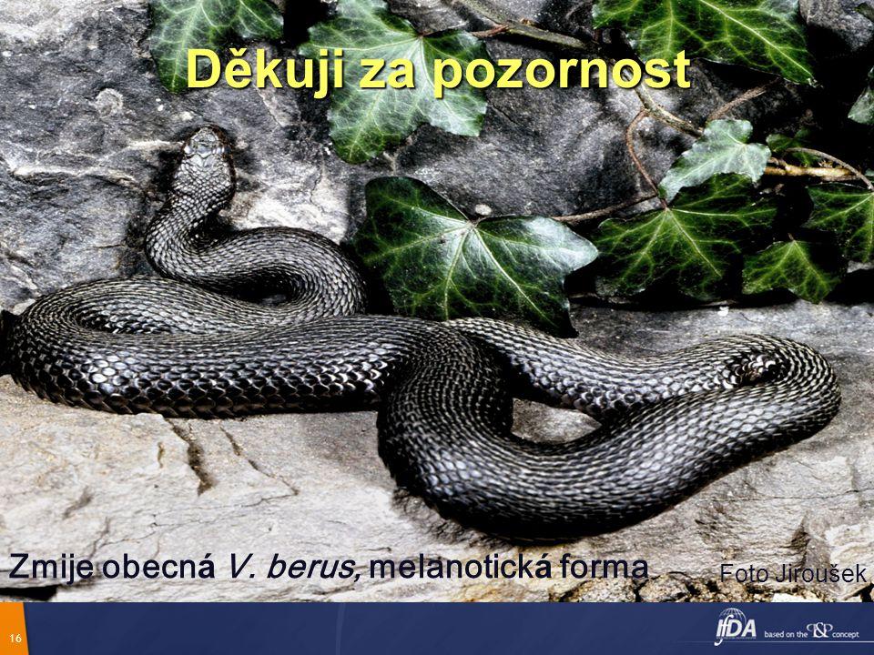 16 Děkuji za pozornost Zmije obecn á V. berus, melanotick á forma Foto Jiroušek