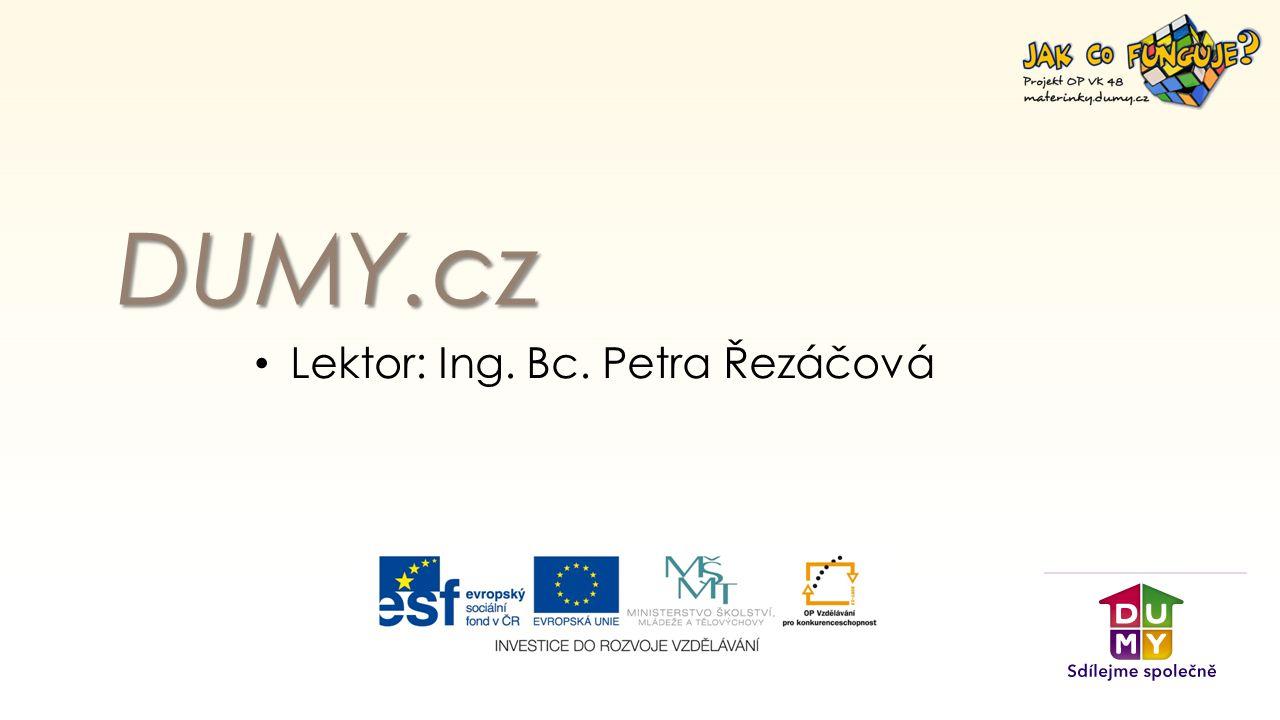 DUMY.cz Lektor: Ing. Bc. Petra Řezáčová