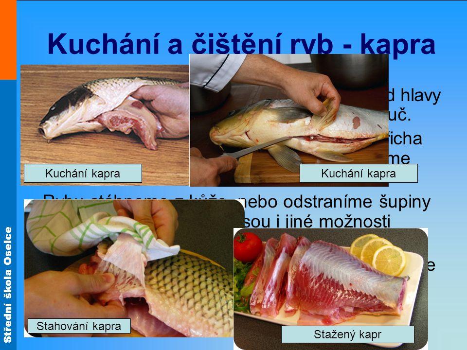 Střední škola Oselce Kuchání a čištění ryb - kapra Opatrně rozřízneme břicho (břišní stěnu) od hlavy k ocasu, pozor na to, abychom neprořízli žluč. Vy