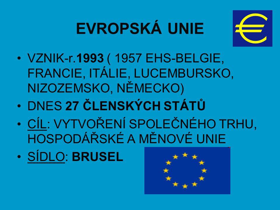 EVROPSKÁ UNIE VZNIK-r.1993 ( 1957 EHS-BELGIE, FRANCIE, ITÁLIE, LUCEMBURSKO, NIZOZEMSKO, NĚMECKO) DNES 27 ČLENSKÝCH STÁTŮ CÍL: VYTVOŘENÍ SPOLEČNÉHO TRH