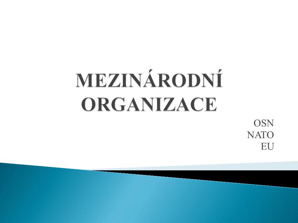  Společnost národů - předchůdce ◦ vznik v průběhu I.