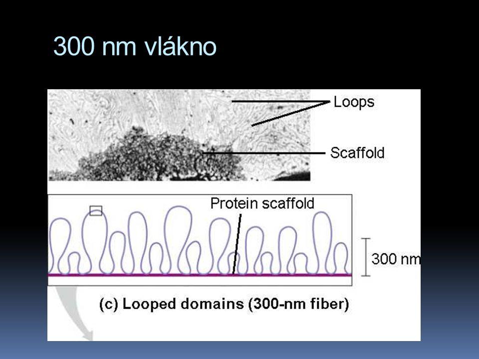 300 nm vlákno