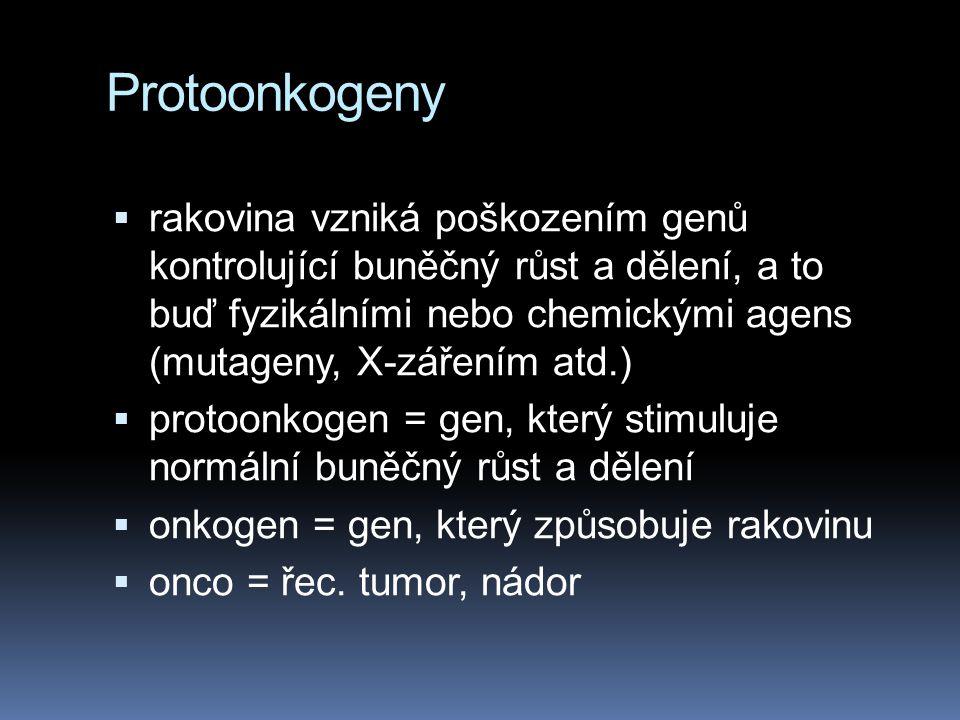 Protoonkogeny  rakovina vzniká poškozením genů kontrolující buněčný růst a dělení, a to buď fyzikálními nebo chemickými agens (mutageny, X-zářením at