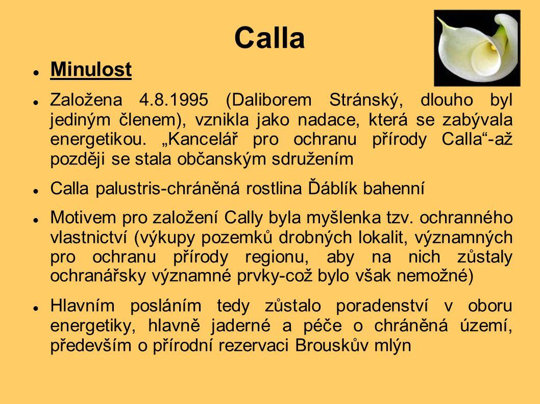 Calla Minulost Založena 4.8.1995 (Daliborem Stránský, dlouho byl jediným členem), vznikla jako nadace, která se zabývala energetikou.