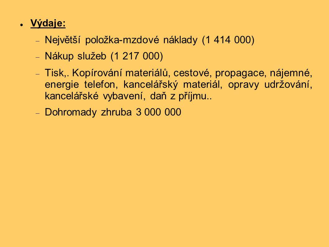Výdaje:  Největší položka-mzdové náklady (1 414 000)  Nákup služeb (1 217 000)  Tisk,.