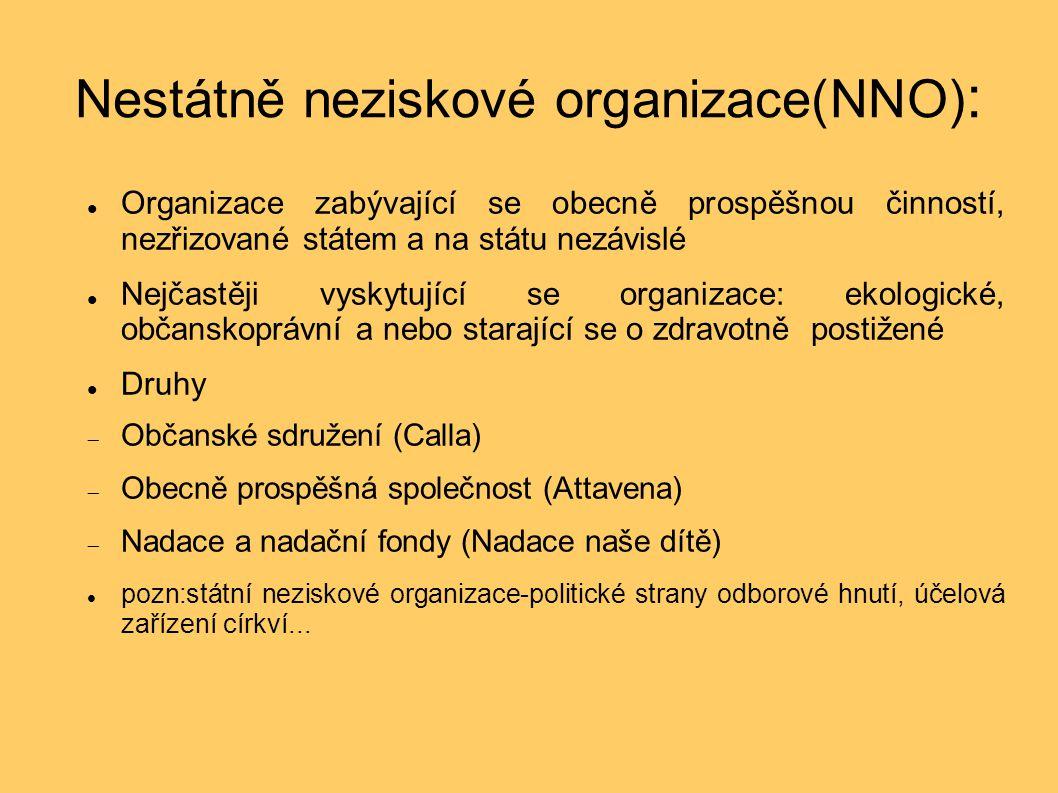Nestátně neziskové organizace(NNO) : Organizace zabývající se obecně prospěšnou činností, nezřizované státem a na státu nezávislé Nejčastěji vyskytující se organizace: ekologické, občanskoprávní a nebo starající se o zdravotně postižené Druhy  Občanské sdružení (Calla)  Obecně prospěšná společnost (Attavena)  Nadace a nadační fondy (Nadace naše dítě) pozn:státní neziskové organizace-politické strany odborové hnutí, účelová zařízení církví...