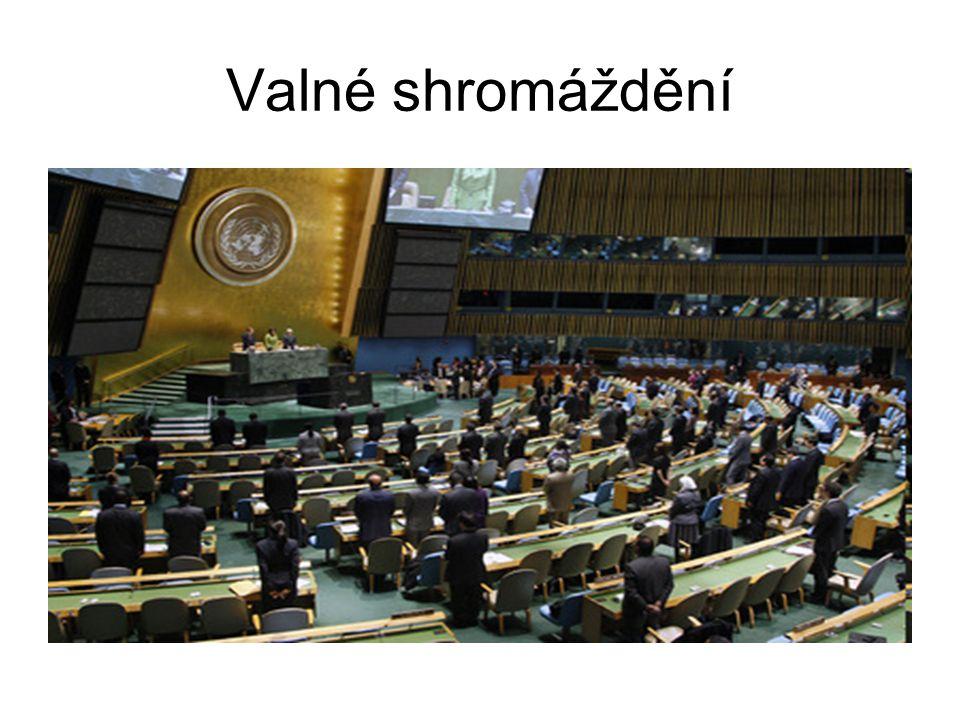Valné shromáždění