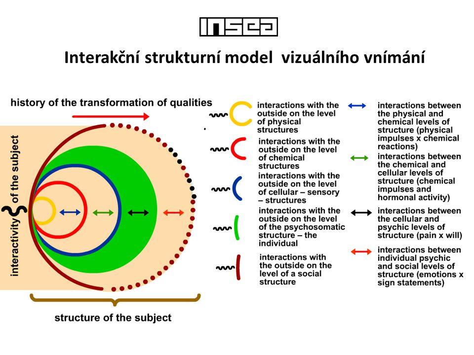 Interakční strukturní model vizuálního vnímání