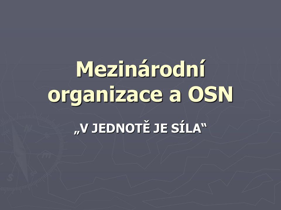 """Mezinárodní organizace a OSN """"V JEDNOTĚ JE SÍLA"""""""