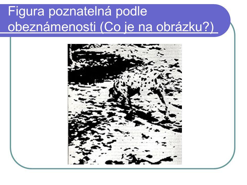 Figura poznatelná podle obeznámenosti (Co je na obrázku?)