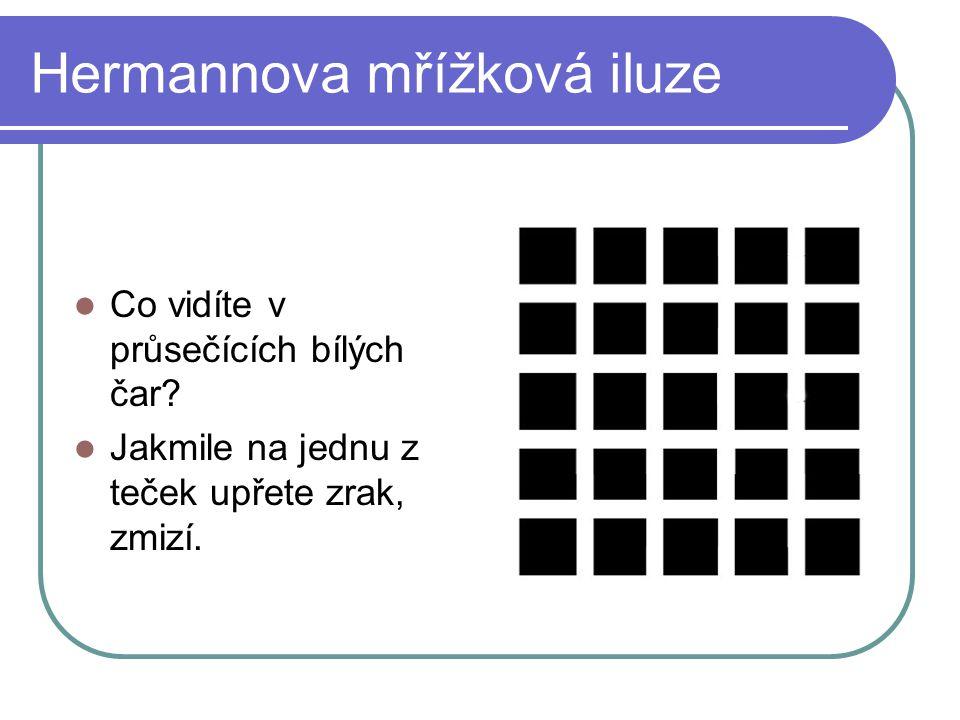 Hermannova mřížková iluze Co vidíte v průsečících bílých čar? Jakmile na jednu z teček upřete zrak, zmizí.